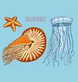 sea creature nautilus pompilius jellyfish and vector image vector image