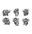 set cute black elephants vector image vector image