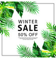 watercolor tropical sale background vector image
