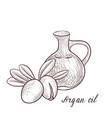 drawing argan oil vector image