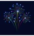 Firework on Dark Background vector image vector image