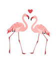 flamingo birds couple heart love symbol isolated vector image vector image
