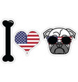 I love pugs with American symbols vector image vector image