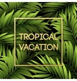 summer tropical background palm leaves vector image vector image