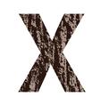 bark letter X vector image vector image