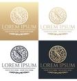 Calligraphic design element Golden brand vector image vector image