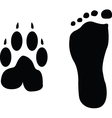 dog and man footprints vector image vector image