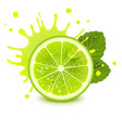 fresh lime with mint leaves and a splash juice vector image vector image