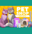 pets shop for cats and kittens pet care vector image vector image