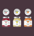 three packaging cherry pear orange jam vector image vector image