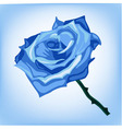 blue frozen rose on a blue background vector image vector image