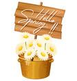 cute hello spring banner vector image vector image