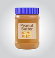 peanut butter detailed icon isolated on white vector image vector image