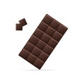 realistic detailed 3d dark chocolate and pieces vector image