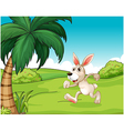 A bunny running at the hilltop vector image vector image