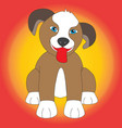 cute dog isolated with multicolored background vector image vector image