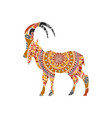 ethnic ornamental ibex vector image