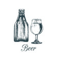 hand sketched craft beer bottle and glass vector image vector image