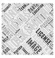 Locksmiths in Texas Word Cloud Concept vector image vector image