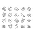 nuts seeds and beans icon set vector image vector image
