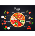 Selection Of Pizza Concept vector image vector image