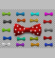 set of multi colored bow tie isolated vector image