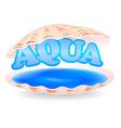 aqua shell vector image vector image