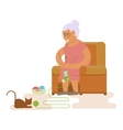 Grandma in chair vector image vector image