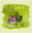poster sketch fresh farm salad vegetables vector image vector image