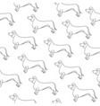 seamless pattern with awesome contour dog breed vector image vector image