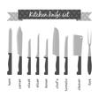 types kitchen knives set vector image