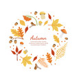 autumn banner template with colorful leaves of vector image vector image