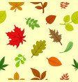 background colorful autumn leaves vector image