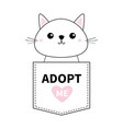 cute cat sitting in pocket adopt me pink vector image