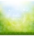hello spring with grass border vector image vector image
