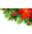 red poinsettia flower realistic vector image