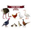 set of farm birds vector image