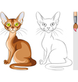 Coloring Book of red cat Abyssinian vector image