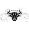 abstract image of a cow in the form space vector image vector image