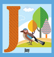 animal alphabet j vector image vector image