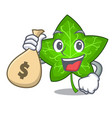 with money bag ivy leaf isolated on character vector image