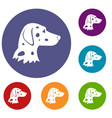 dalmatians dog icons set vector image vector image