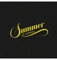handwritten Summer Is Coming retro label vector image vector image