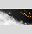 white puff clouds on dark transparent vector image