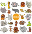 wild african animal characters large set vector image vector image