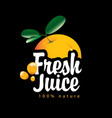 banner with orange fruit and fresh juice splashes vector image vector image