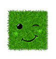 green grass square field 3d face wink smile vector image vector image