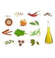 group with spice vector image vector image