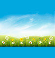 nature background with grass and flowers and vector image