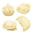 realistic 3d dumplings pelmeni khinkali vector image